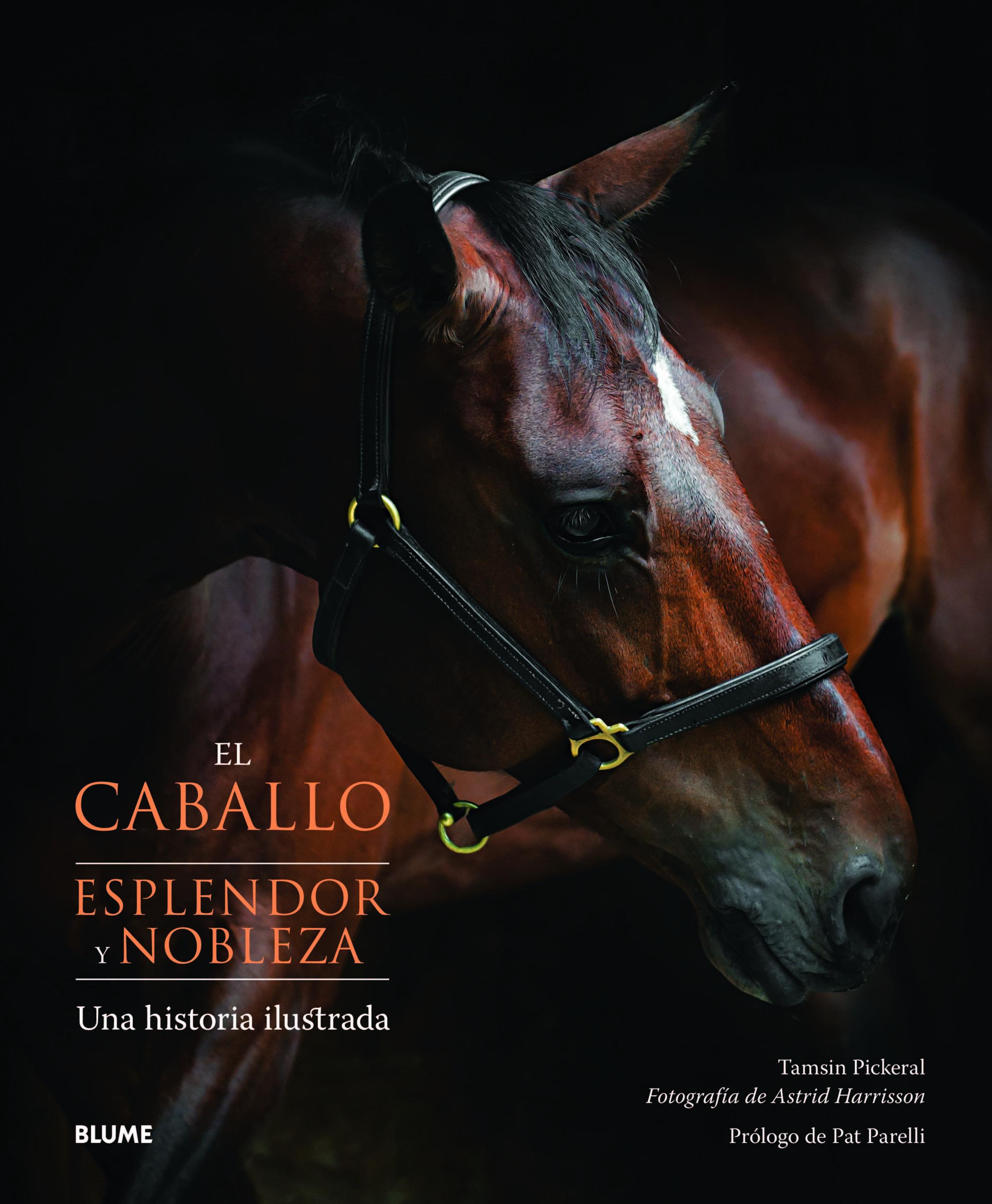 EL CABALLO. ESPLENDOR Y NOBLEZA. UNA HISTORIA ILUSTRADA