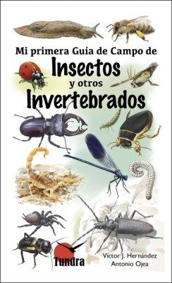 INSECTOS Y OTROS INVERTEBRADOS. MI PRIMERA GUIA DE