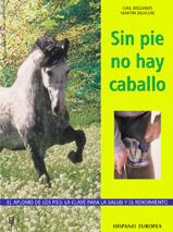 SIN PIE NO HAY CABALLO EL APLOMO DE LOS PIES: LA CLAVE PARA LAS SALUD