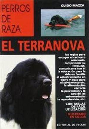 EL TERRANOVA. PERROS DE RAZA