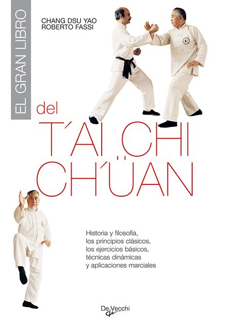 EL GRAN LIBRO DEL TAICHICHUAN