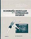 ECOGRAFÍA MUSCULAR DE LA EXTREMIDAD INFERIOR: SISTEMÁTICA DE EXPLORACIÓN Y LESIONES EN EL DEPORTE