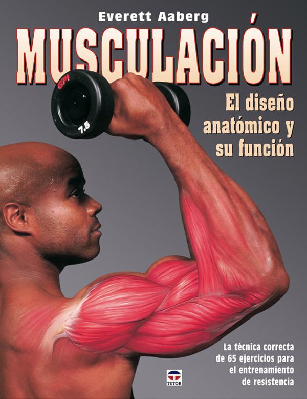 MUSCULACION EL DISEÑO ANATOMICO Y  SU FUNCIÓN