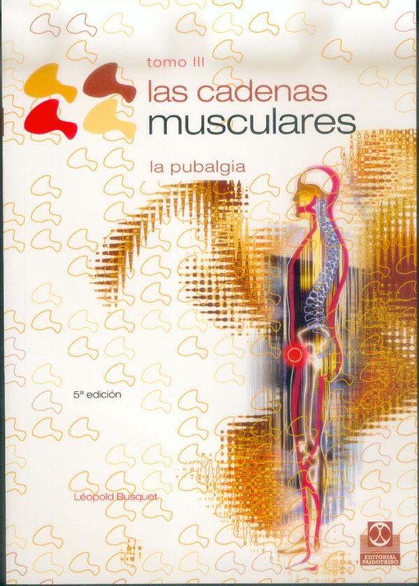 LAS CADENAS MUSCULARES III. LA PUBALGIA