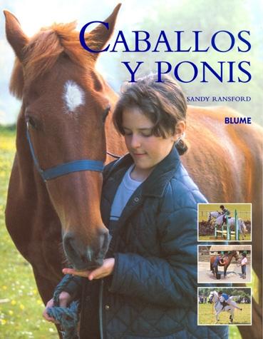 CABALLLOS Y PONIS