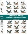 GANSOS Y PATOS : GUÍA DE ESPECIES DE INTERÉS CINEGÉTICO DEL MUNDO