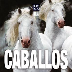 CABALLOS XL