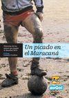 UN PICADO EN EL MARACANÁ. HISTORIAS DE LOS PAÍSES QUE JUEGAN EL MUNDIAL 2014